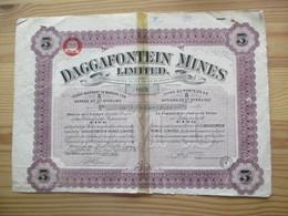 Daggafontein Mines Limited - Titre De 5 Actions - Mijnen