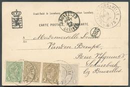C.V Tb Affr. à 10c Obl. Dc LUXEMBOURG-VILLE 14-9-1899 Vers Schaerbeek (Bruxelles) - 12879 - 1895 Adolphe Right-hand Side