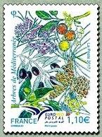 N°5164 - France
