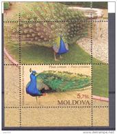 2013. Moldova, Kishinev Zoo,  S/s, Mint/** - Moldavia