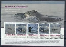 Niederlande Klb. 'Pazifischer Nordkaper' / Netherlands Sh. 'North Pacific Right Whale' **/MNH 2018 - Baleines