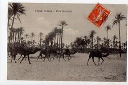 LIBYE - TRIPOLI ITALIANA - Viale Hamamjé - Libya