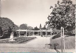 CARMAUX  - Jardin Public De La Sévigné - Carmaux