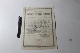 Certificat D'étude Primaire Tlemcen 1947 - Diplômes & Bulletins Scolaires