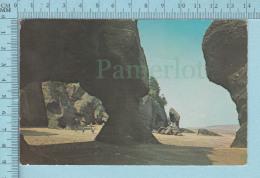 Hopewell New Brunswick Canada - The Rocks,  - Postcard, Post Card, Carte Postale - Nouveau-Brunswick