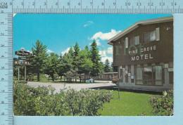 Sault St-Marie Ontario Canada - Pine Grove Motel  - Postcard, Post Card, Carte Postale - Ontario