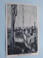 LOURENCO MARQUES (P.E.A.) Doca De Abrigo ( Santos Rufino ) Anno 19?? ( Zie Foto Details ) ! - Mozambique