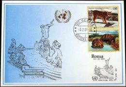 UNO GENF 2001 Mi-Nr. 318 Blaue Karte - Blue Card - Briefe U. Dokumente