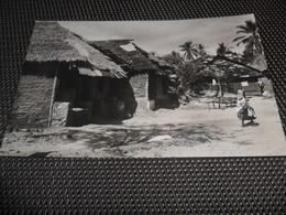 Tanzania    Zanzibar   : Negerdorf - Tanzanie