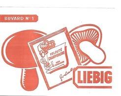BUVARD  Blanc  Marque  Alimentaire  LIEBIG - Collections, Lots & Séries