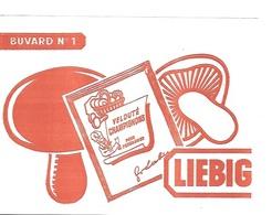 BUVARD  Blanc  Marque  Alimentaire  LIEBIG - Buvards, Protège-cahiers Illustrés
