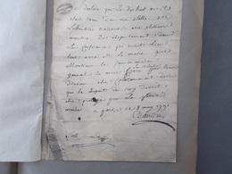 HISTOIRE.FAC-SIMILE. DECLARATION MANUSCRITE DE DANTON CONCERNANT LE DEPART DU ROI. - Old Paper