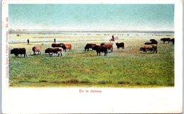 CORRIDA - En La Dehesa - Collector Romo Y Fussel - Corridas N° 408 (espagne) - Corrida