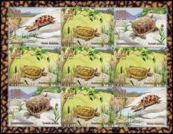 564 MNH ** Bloc Tortues Tortue  Turtle  Turtles - Turtles