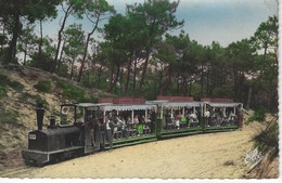 CPSM 33 ( Gironde ) -  BASSIN D'ARCACHON - CAP FERRET - Le Petit Train Forestier - Frankreich