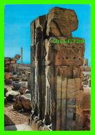 PERSEPOLIS, IRAN - A GATE OF KING DARYUSH PALACE - - Iran