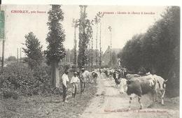 CHOREY. LE TROUPEAU. CHEMIN DE CHOREY A CORCELLES - Autres Communes