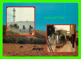 EL-ASNAM, ALGÉRIE - SOUVENIR MULTIVUES -  TLEMCEN - - Autres Villes