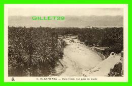 EL-KANTARA, ALGÉRIE - DANS L'OASIS, VUE PRISE DU MUSÉE - PHOTO ALBERT - - Algérie