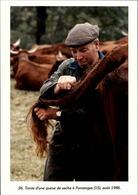 15 - FONTANGES - Tontes De Queues De Vaches - 1986 - France