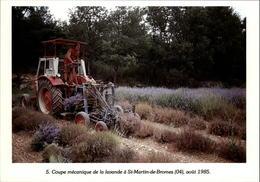 04 - SAINT-MARTIN-DE-BROMES - Coupe De La Lavande - Tracteur - 1985 - Autres Communes