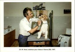 38 - VIENNE - Toiletteur Pour Chiens - 1987 - Vienne