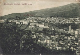 TONARA - VG     AUTENTICA 100% - Savona