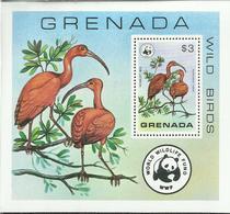 GRENADA 1978 FAUNA WWF WILD BIRDS SCARLET IBIS BLOCK SHEET BLOCCO FOGLIETTO MNH - Grenada (1974-...)