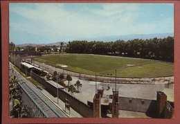38  STADIO MONTEVARCHI - ESTADIO – STADION – STADE – STADIUM – CAMPO SPORTIVO - Stades