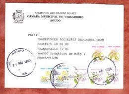 Brief, MiF Blueten, Agudo Nach Frankfurt 1993 (53886) - Cartas