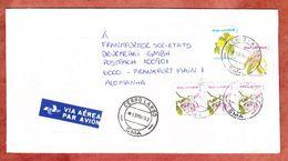 Praegeumschlag, Luftpost, MiF Blueten, Cerro Largo Nach Frankfurt 1993 (53895) - Cartas