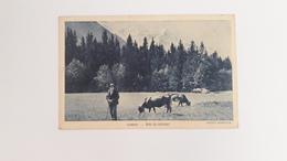 CHAMONIX (74)  Bois Du Bouchet -  Berger Et Son Troupeau - Chamonix-Mont-Blanc