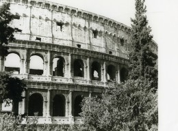 Italie Roma Rome Colisée Colosseum Colosseo Ancienne Photo 1961 - Places