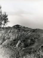 Italie Sienne Crete Senesi Cretes Siennoises Panorama Ancienne Photo 1961 - Places