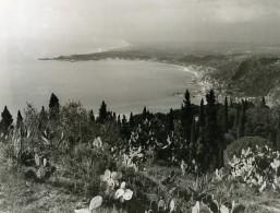 Italie Taormine Taormina Panorama Cactus Ancienne Photo 1961 - Places