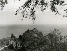Italy Taormine Taormina Panorama Old Photo 1961 - Places
