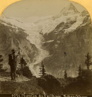 Suisse Chemin Du Faulhorn Le Schreckhorn Ancienne Photo Stereo Gabler 1885 - Stereoscopic
