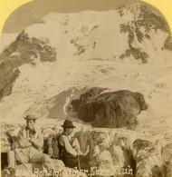 Suisse Alpinistes Sur Le Glacier Du Rottal Ancienne Photo Stereo Gabler 1885 - Stereoscopic