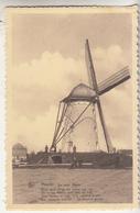 Haacht - De Oude Molen En Omgeving - Geanimeerd Uitg. Drukkerij Coop-Bosmans, Haacht/Nels - Windmills