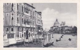 CARTOLINA - POSTCARD - VENEZIA - CANAL GRANDE E CHIESA DELLA SALUTE - Venezia