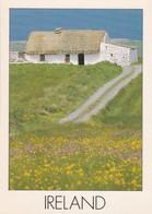 CARTOLINA - POSTCARD - IRELAND - IRLANDA - Irlanda