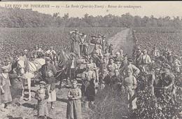 REPRODUCTION DE C P A---37----les Vins De Touraine-la Borde-retour Des Vendangeurs--( Joué-les Tours )-voir 2 Scans - Altri Comuni