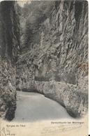 Suisse (BE BERNE ) Aareschlucht (Les Gorges De L'Aar / Meiringen PRECURSEUR 1904 - BE Berne