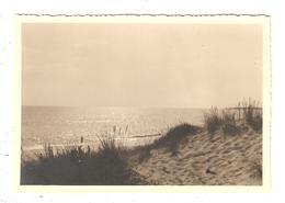 Photo Format  Carte (CPA) 85 LONGEVILLE Plage Océan . 1955 - France