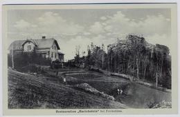 Altvatergebirge Harichstein Bei Jesenik Freiwaldau      1938y..     E218 - Sudeten