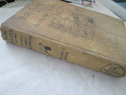WILLARD F.BEKER, BOB DEXTER AND THE AEROPLANE MYSTERY,  CUPPLES&LEON COMPANY NEW YORK 1930 - Livres, BD, Revues