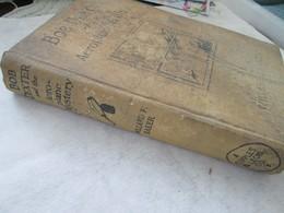 WILLARD F.BEKER, BOB DEXTER AND THE AEROPLANE MYSTERY,  CUPPLES&LEON COMPANY NEW YORK 1930 - Books, Magazines, Comics