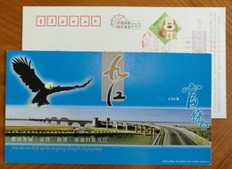 Eagle,Jiujiang Changjiang River Double Deck Railway-highway Combined Bridge,CN 06 Jiujiang New Year Pre-stamped Card - Bridges