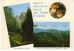 GENOVA SALUTI ALTA VALLE TARO E CENA FUNGHI PORCINI - Genova