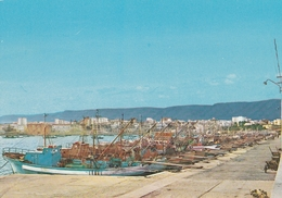 MANFREDONIA - Pescherecci Nel Porto - Manfredonia